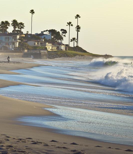 Beach Waves - Avis