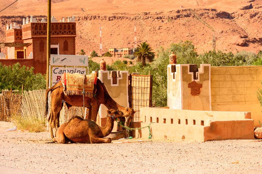 tourisme histoire avis maroc