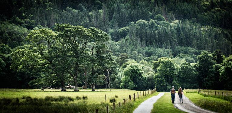 Car Hire Ireland | Avis UK