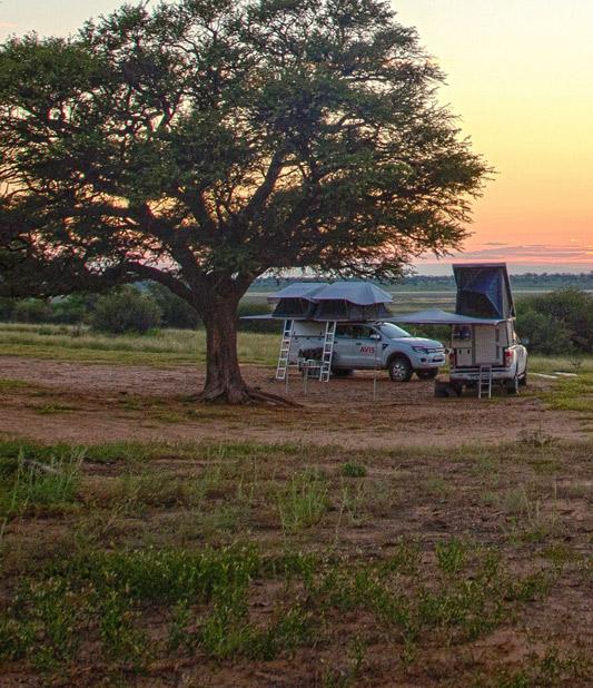 Avis Safari Rental Level-2 Offer