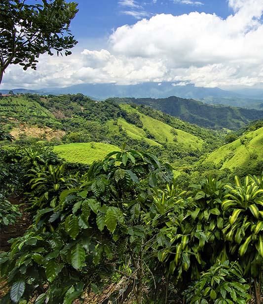 Economisez 10% sur votre séjour en Amérique Latine