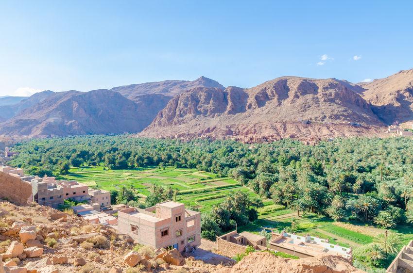 location voiture avis maroc offre sur mesure